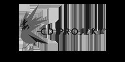 cd projekt red logo horizontal 1000x500 1